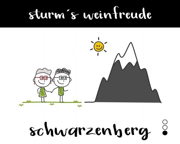 2019 Schwarzenberg T